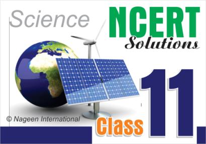 NCERT-11-B